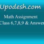Math Assignment Class 6,7,8,9 & Answer
